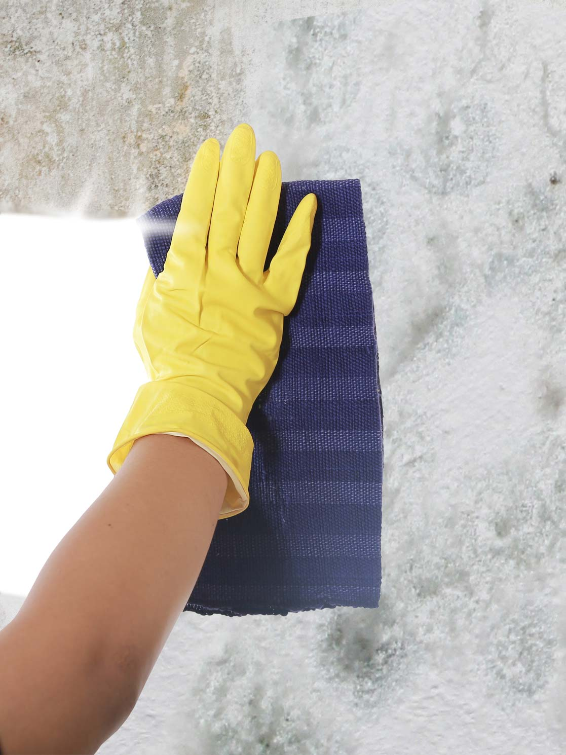 Clean mold off of bathroom tiles